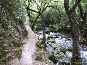 2015 - Sendero río Majaceite 31